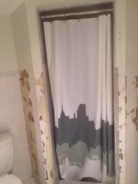 Or the shower front!