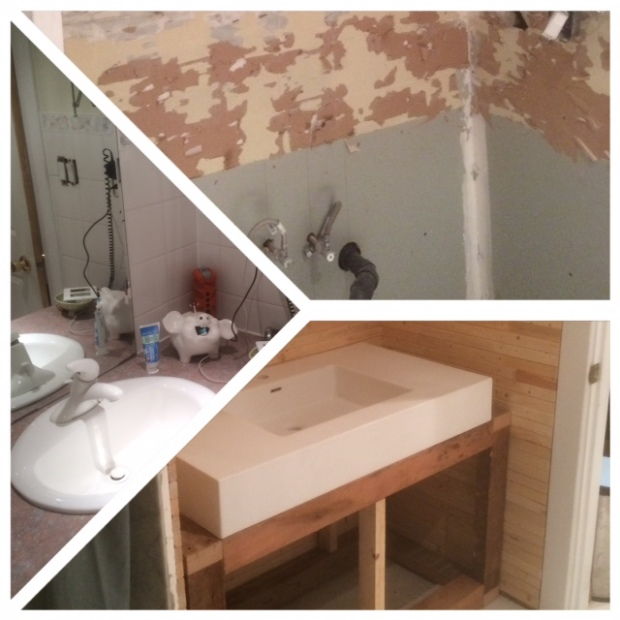 The white swan sink Before/After
